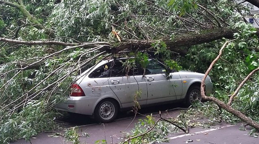 Moscow residents share 'post-apocalyptic' pics of night thunderstorm aftermath (PHOTOS)