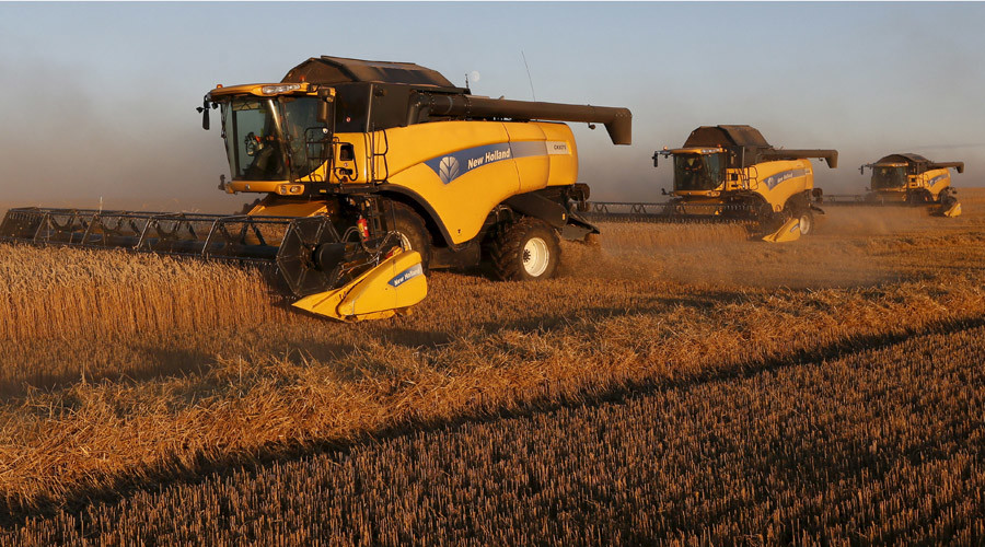 Russia dominates global wheat market