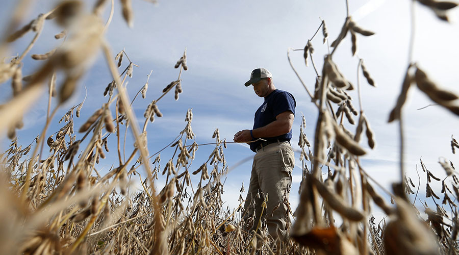 Farm feud: Monsanto and its clients under fire for damaging crops