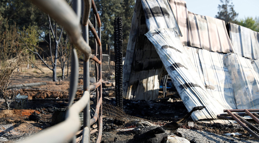 Charred animal remains are seen at a neighborhood destroyed by the Clayton Fire at Lower Lake in California, U.S. August 16, 2016. © Stephen Lam