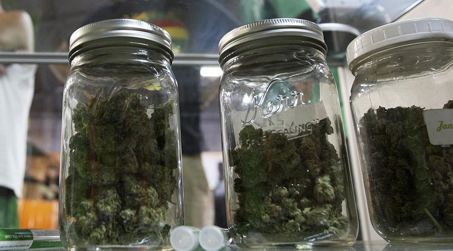 Court bans DOJ from prosecuting medical marijuana users, growers