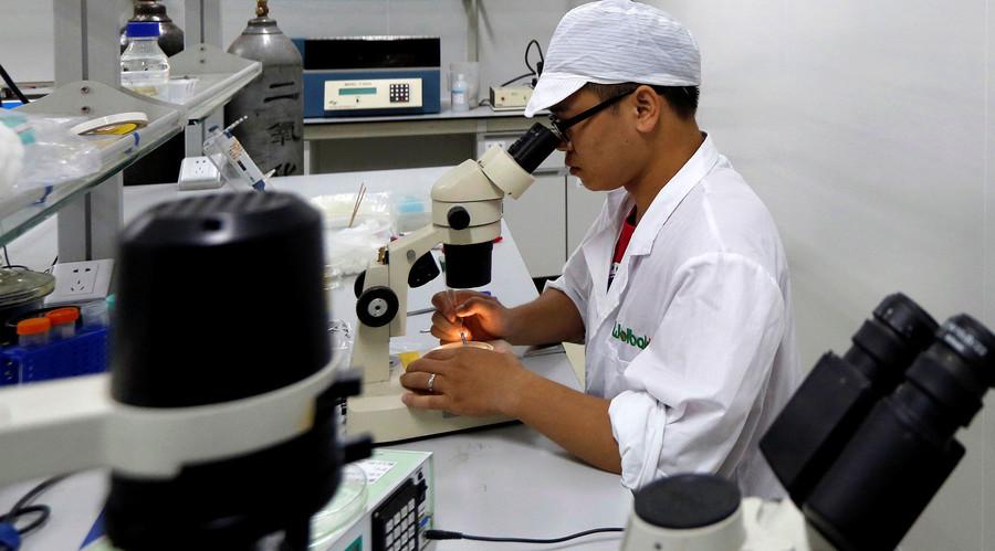 Zika virus can 'wreak havoc' on adult's memory – study