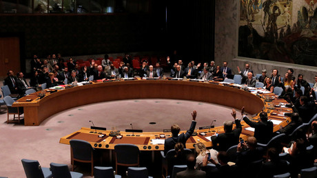 © The United Nations Security Council © Andrew Kelly