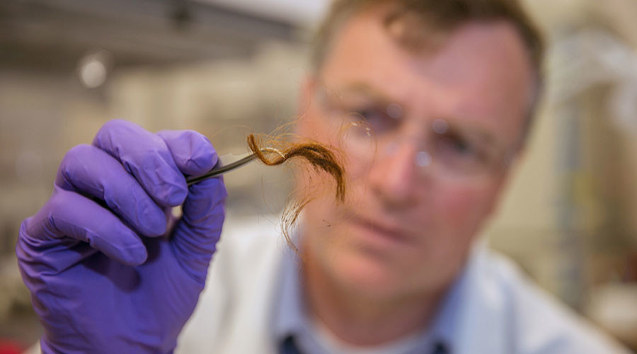 Say goodbye to DNA testing: US researchers tout revolutionary hair-protein identification method