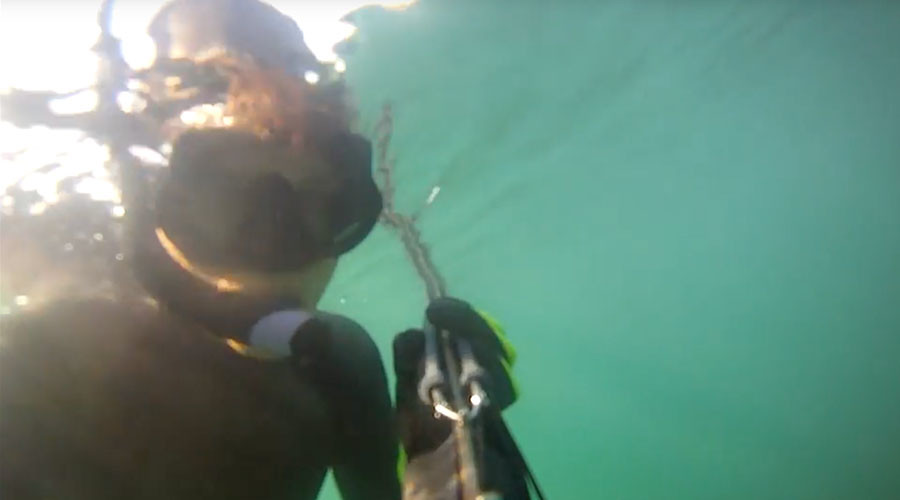 Spine-chilling shark attack captured on swimmer's underwater camera (VIDEO)