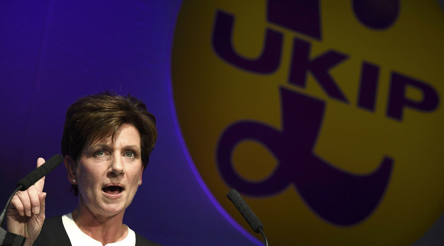 New UKIP leader hails Putin as 'hero,' whips up social media frenzy