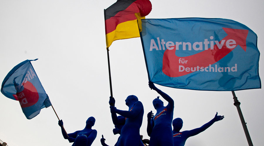 German anti-immigrant AfD gains record high support – poll