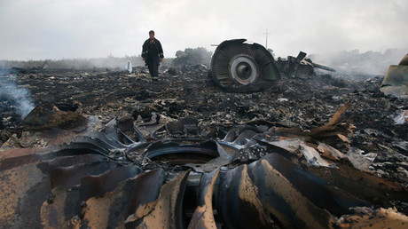 An Emergencies Ministry member walks at a site of a Malaysia Airlines Boeing 777 plane crash near the settlement of Grabovo in the Donetsk region, July 17, 2014 © Maxim Zmeyev