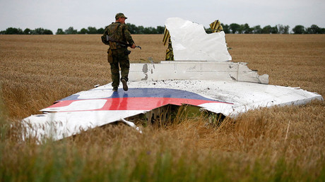 An armed man stands on part of the wreckage of the Malaysia Airlines Boeing 777 plane after it crashed near the settlement of Grabovo in the Donetsk region, July 17, 2014. © Maxim Zmeyev