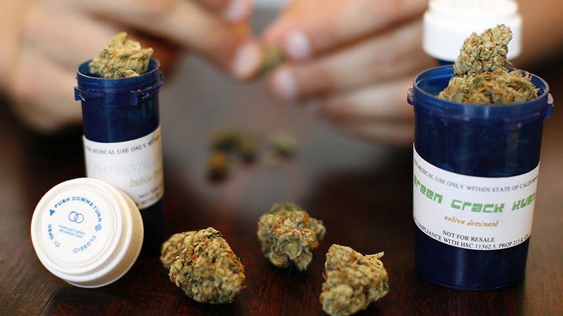Australia legalizes medical marijuana cultivation — RT News