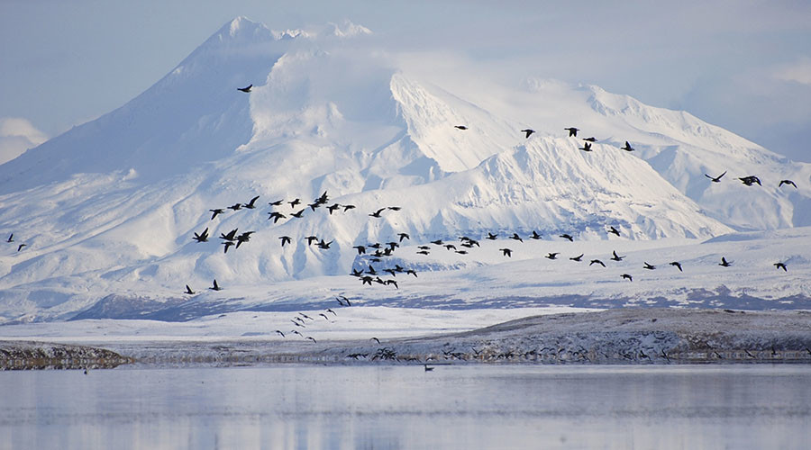 Major offshore oil discovery may revamp Alaska's declining reserves