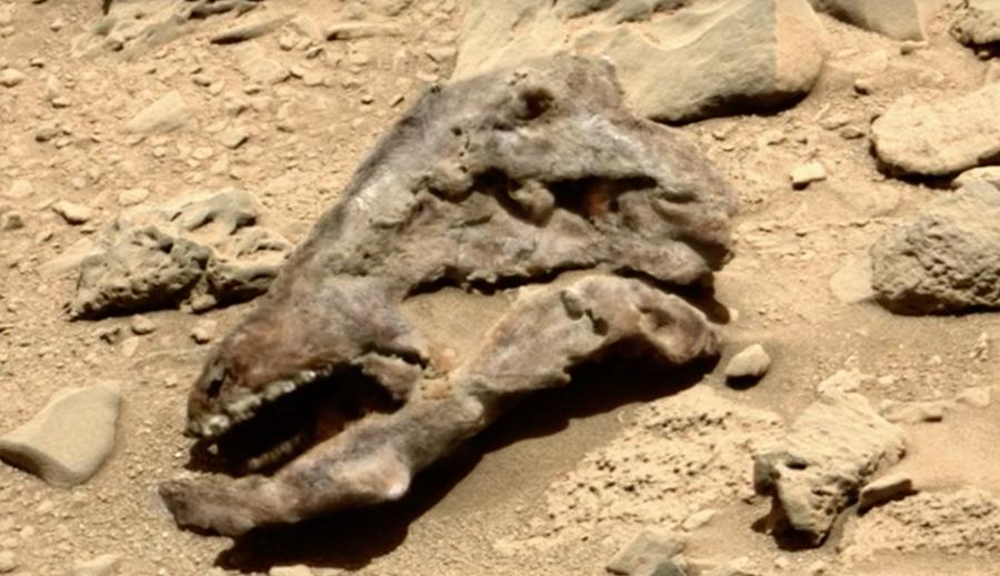 Mars 2020: 5 striking NASA images fostering hopes of ...