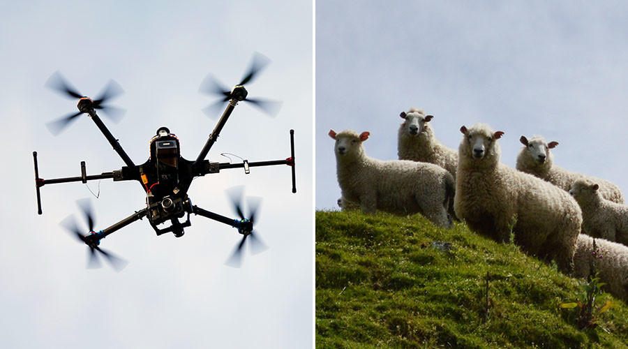 Robot tractors & sheep-herding drones: Britain's futuristic new farm workers