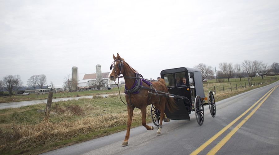 Amish residents in Kentucky take on authorities over horse poop bag laws