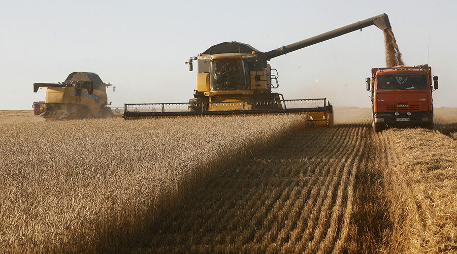 Bumper crop: Russia sees 40yr-high harvest