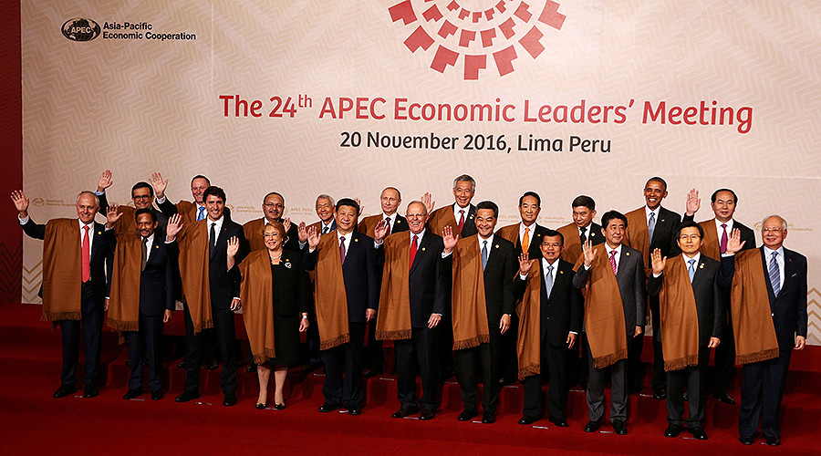 APEC countries aim for 45% cut in energy consumption by 2035, condemn terrorism & corruption