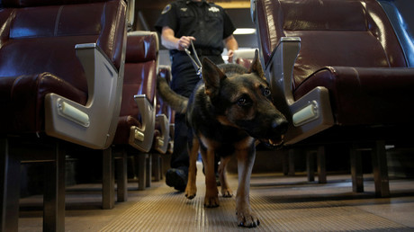 Metropolitan Transit Authority (MTA) Police Officer Kevin Pimpinelli works with his K-9 partner Johnny, a German Shepherd, at the new MTA Police Department Canine Training Center in Stormville, New York, U.S., © Mike Segar