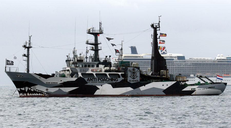 2 ships set sail to 'intercept' Japanese whale fleet (PHOTOS, VIDEO)