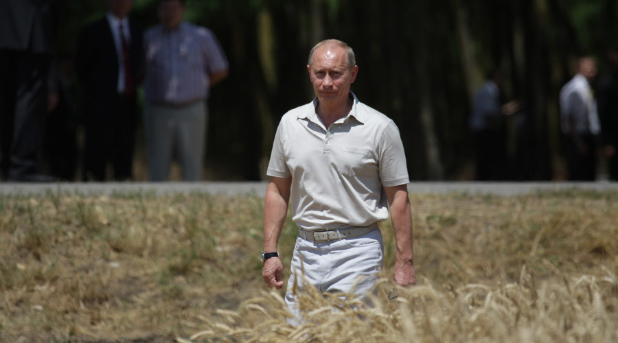 Russia key player on global agriculture market - FAO director