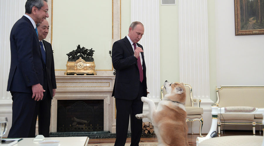 Putin's 'no-nonsense' dog causes commotion at interview with Japanese media (VIDEO)