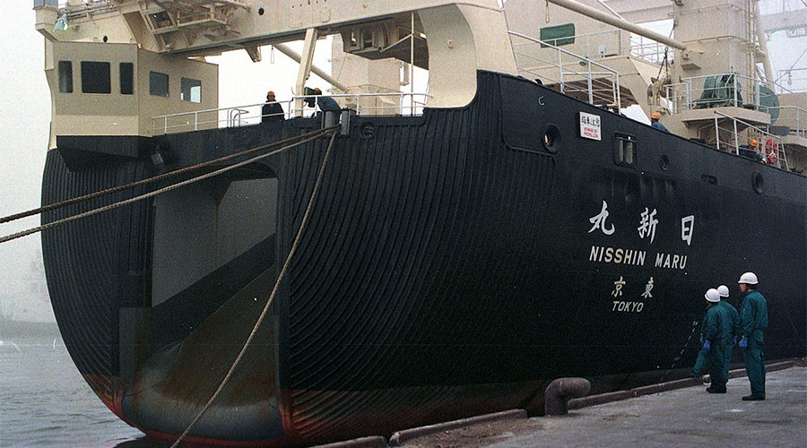 Japanese ship caught with illegally-slaughtered whale aboard