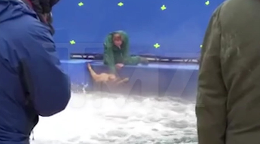 A Dog's Purpose? Petrified pup flung into pool during film production (VIDEO)