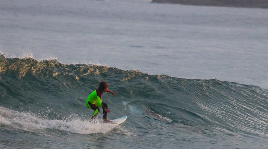 Photobombed by a great white: Menacing shark tracks child surfer (PHOTO)
