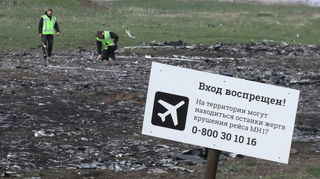 Dutch journalists criticize MH17 probe results after finding 'many pieces' still at crash site