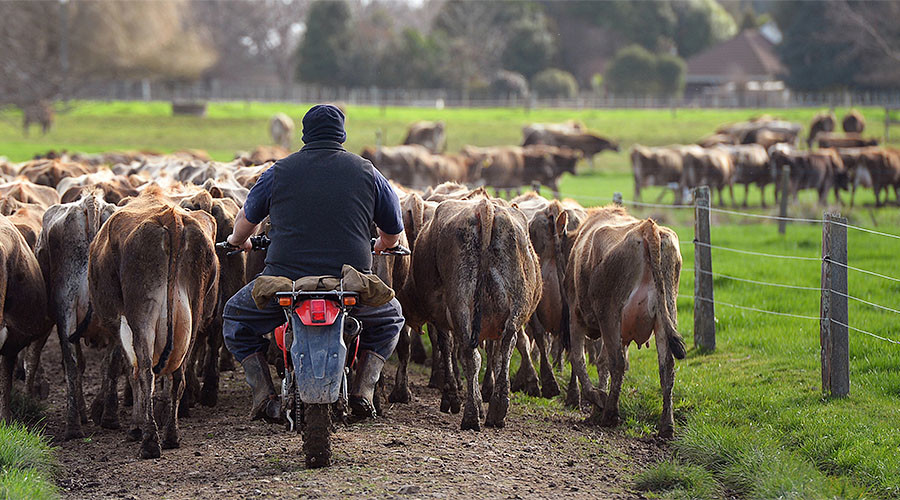 Russia issues temporary ban on beef from New Zealand