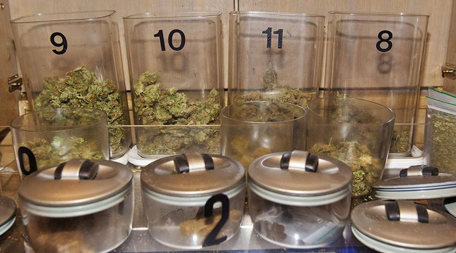Dutch MPs vote to allow pot cultivation