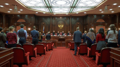 Constitutional Court orders retrial in Russian protester's case