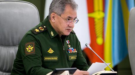 Defense Minister Sergey Shoigu © Sputnik