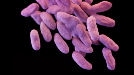 WHO urges quick development of antibiotics to combat superbugs, warns options are running out