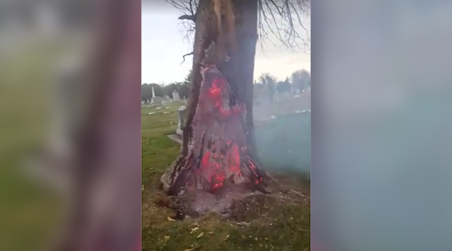 Gates to hell? Eerie blazing tree base filmed after lightning storm (VIDEO, POLL)