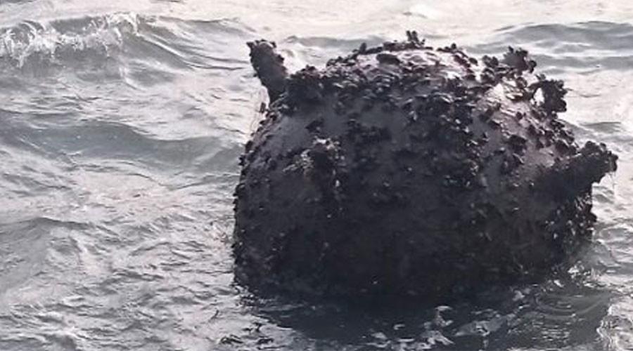 86yo mine found shrouded in mystery & vegetation off Swedish island