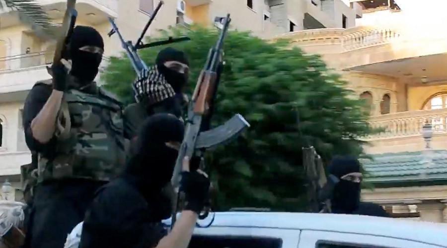 Swedish jihadists funded themselves through benefits, govt says 'unacceptable'