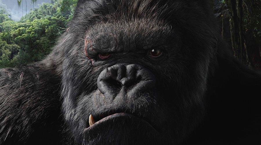 Giant King Kong statue 'unsuitable' for scenic Vietnam park - experts