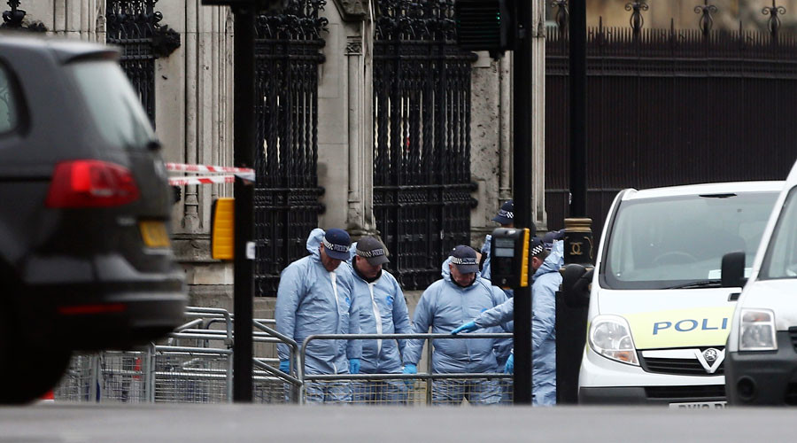 Westminster attack gate identified as security 'weak spot', defence secretary pledges review
