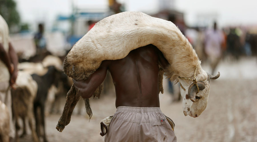 Zimbabweans could soon use livestock as collateral