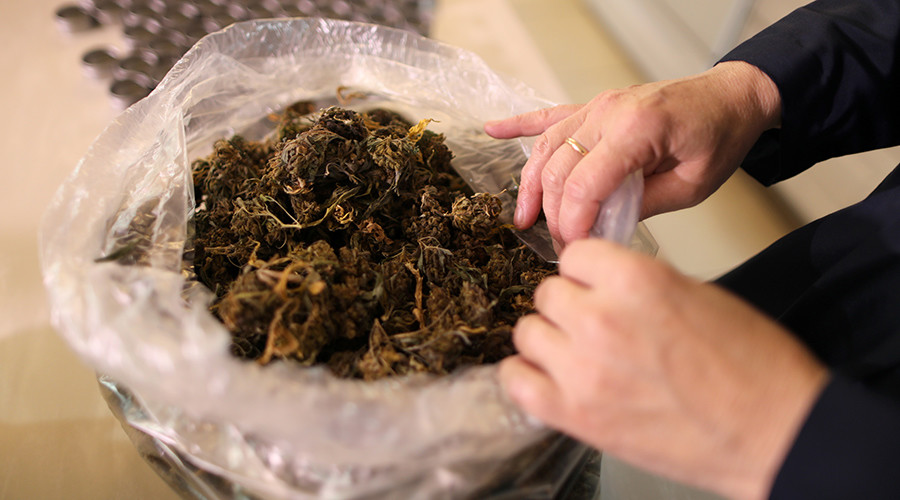 Medical marijuana program 'could save US taxpayer $1bn' – study