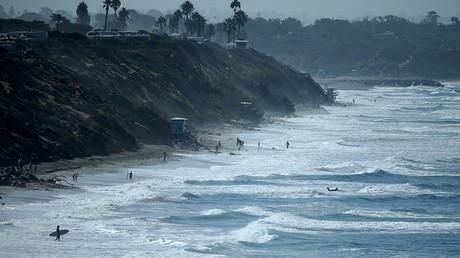 Algae toxin killing marine mammals along California coast