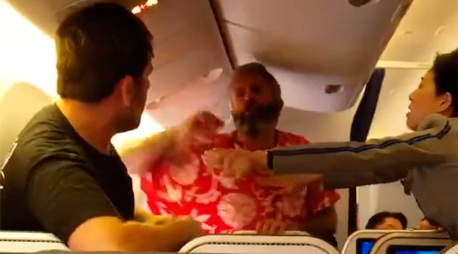 Punches fly: US man arrested after trading blows amid boarding of long-haul flight (VIDEO)