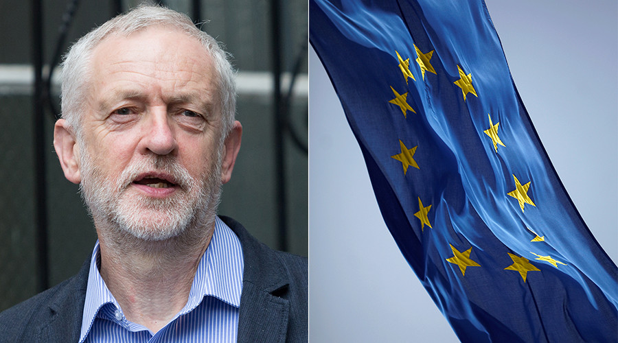 Tories accuse Eurocrats of rooting for Labour (VIDEO)