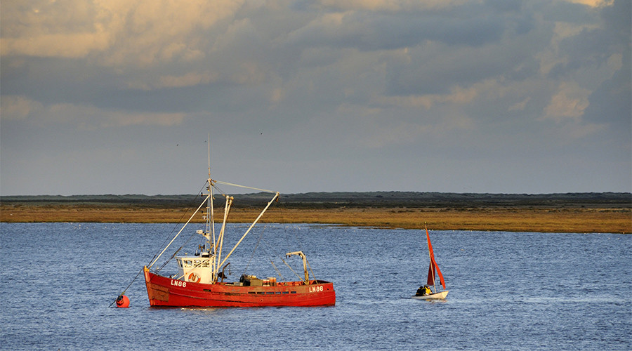 Fish caught by foreign vessels in UK waters must be landed, processed & sold in Britain – UKIP