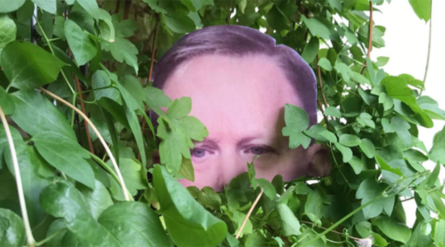 Pandemic of 'Sean Spicer' heads in garden bushes across globe