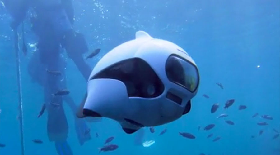'World's first' bionic fish drone makes waves with Kickstarter success (VIDEO)