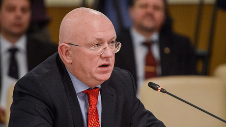 Russia appoints new UN envoy capable of 'taking a blow'