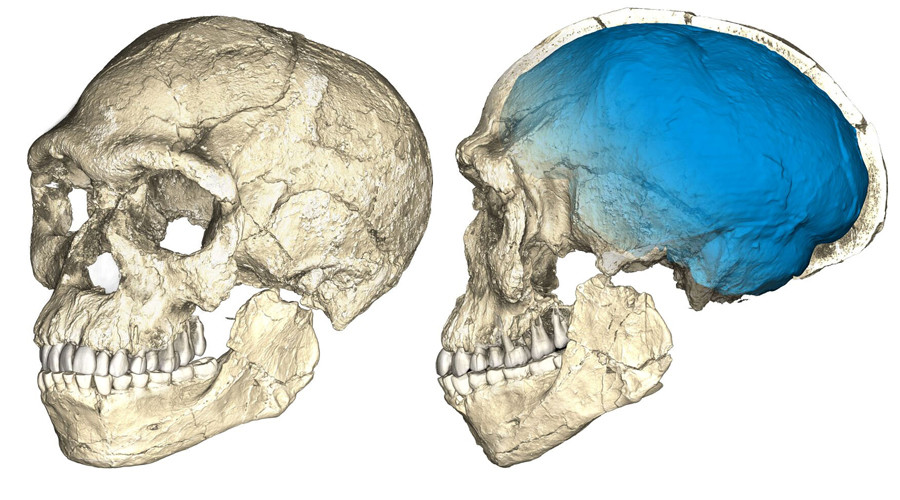 'Oldest ever' 300,000yo human fossils unearthed in Morocco