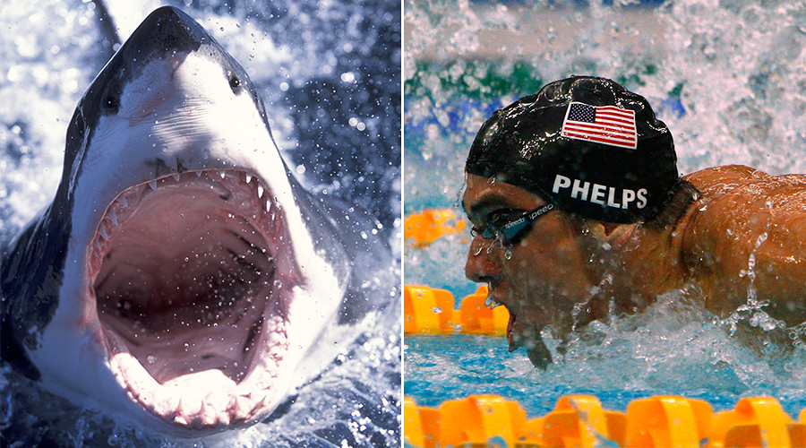 Phelps V Shark: Olympic legend 'will race great white' in TV special