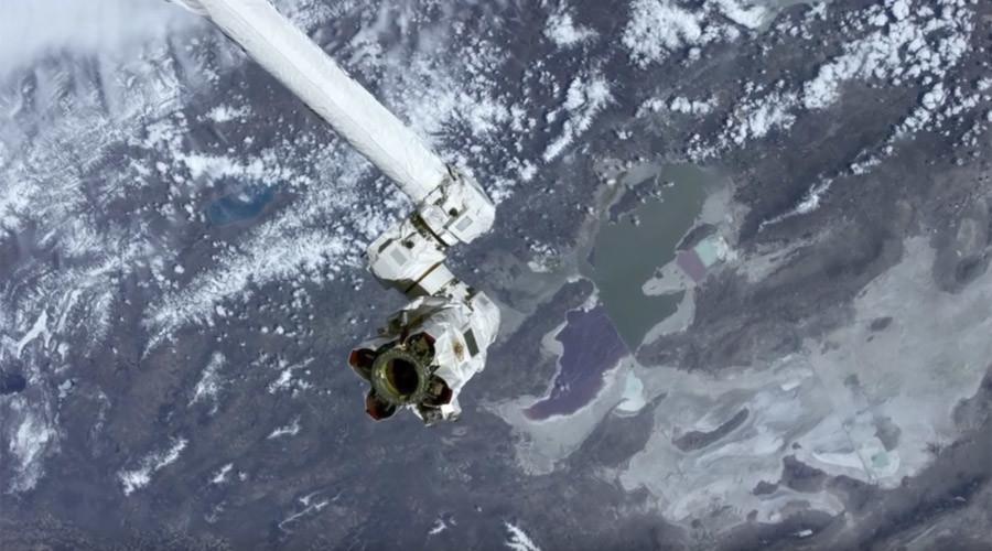 Force of nature: NASA 'Gecko Gripper' licks space litter problem (VIDEO)